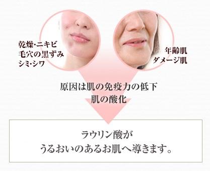 乾燥・ニキビ 毛穴の黒ずみ シミ・シワ 年齢肌 ダメージ肌 原因は肌の免疫力の低下 肌の酸化 抗菌・抗酸化性の高いラウリン酸がうるおいのあるお肌へ導きます。